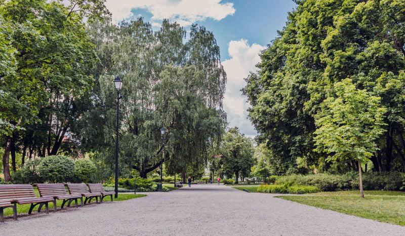 Parkas.VGTU .nuotr .2
