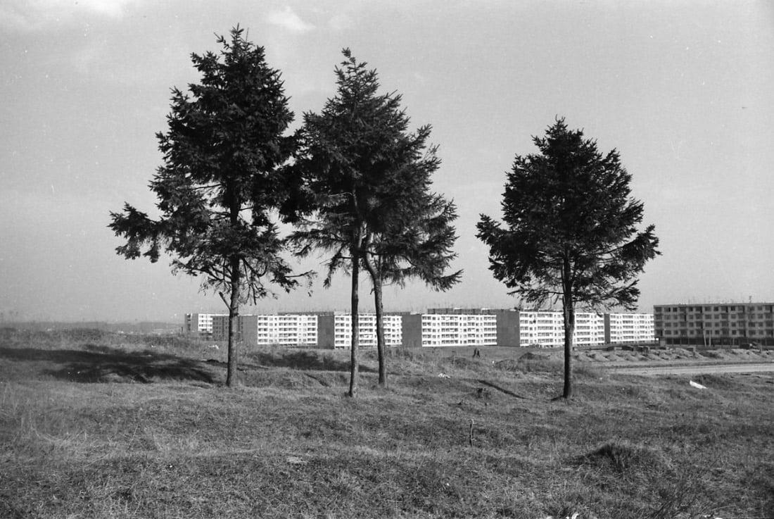 Putinų mikrorajonas Alytuje. Zenono Bulgakovo nuotr. 1972 m. Alytaus kraštotyros muziejus.