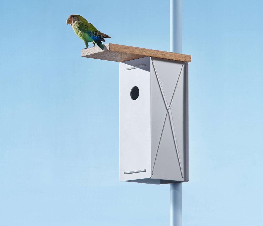 Surenkamas inkilas BIRD BNB.