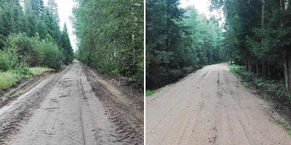 Rietavo miškų urėdijos nuotr.