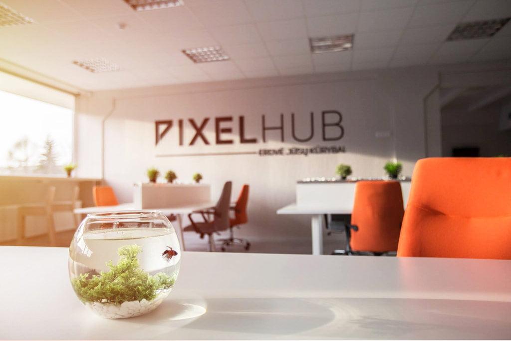 """Pixel Hub"" nuotr."